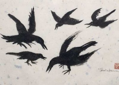 Black Birds Study 1975